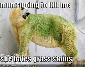 mums going to kill me  she hates grass stains