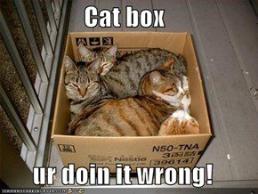Cat box  ur doin it wrong!