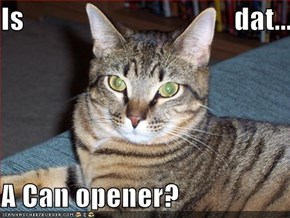 Is                                     dat...  A Can opener?