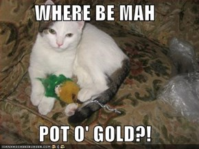 WHERE BE MAH  POT O' GOLD?!