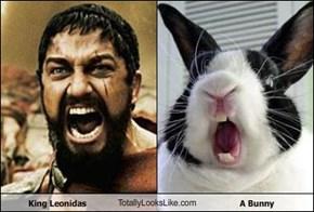 King Leonidas TotallyLooksLike.com A Bunny