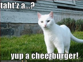 taht'z a...?  yup a cheezburger!
