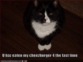U haz eaten my cheezburger 4 the last time