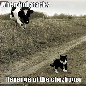 When fud atacks  Revenge of the chezbuger