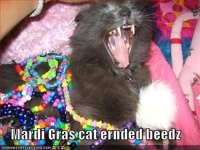 Mardi Gras cat ernded beedz