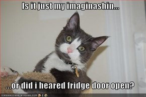 Is it just my imaginashin...  ...or did i heared fridge door open?
