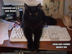 Basement cat is in your history