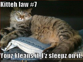 Kitteh law #7  Youz kleans it, I'z sleepz on it.