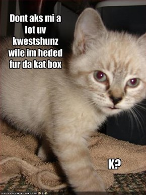 Dont aks mi a lot uv  kwestshunz  wile im heded fur da kat box