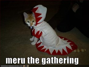 meru the gathering