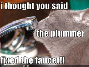 i thought you said the plummer fixed the faucet!!