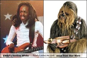 EW&F's Verdine White TotallyLooksLike.com Chewbacca from Star Wars