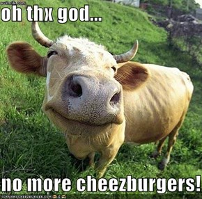 oh thx god...     no more cheezburgers!