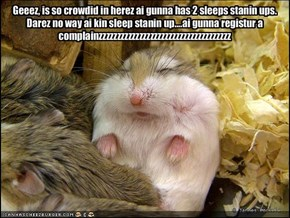 Geeez, is so crowdid in herez ai gunna has 2 sleeps stanin ups.  Darez no way ai kin sleep stanin up....ai gunna registur a complainzzzzzzzzzzzzzzzzzzzzzzzzzzzzzzzzzzzz