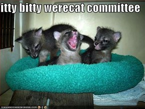 itty bitty werecat committee