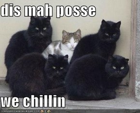dis mah posse  we chillin