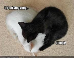 lol cat ying yang...