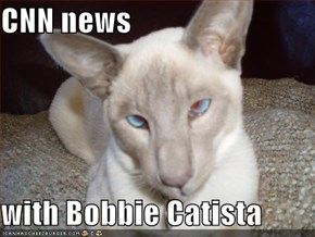 CNN news  with Bobbie Catista