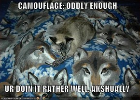 CAMOUFLAGE: ODDLY ENOUGH  UR DOIN IT RATHER WELL, AKSHUALLY