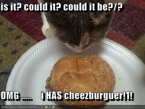 is it? could it? could it be?/?  OMG .....     i HAS cheezburguer!1!