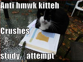 Anti hmwk kitteh Crushes  study    attempt