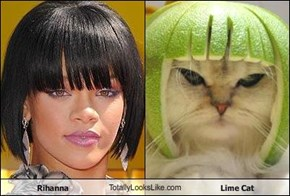 Rihanna TotallyLooksLike.com Lime Cat