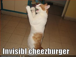 Invisibl cheezburger