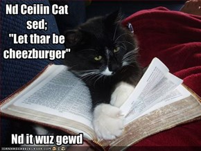 Nd Ceilin Cat sed;
