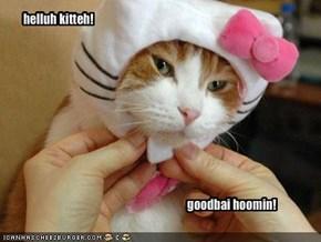helluh kitteh!