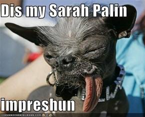 Dis my Sarah Palin  impreshun