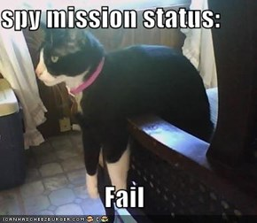 spy mission status:  Fail
