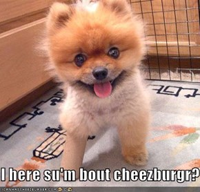 I here su'm bout cheezburgr?