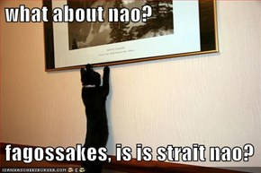 what about nao?   fagossakes, is is strait nao?