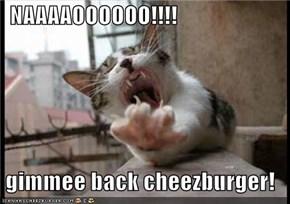 NAAAAOOOOOO!!!!   gimmee back cheezburger!