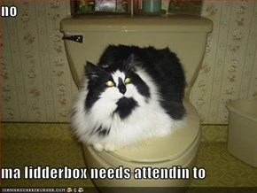 no  ma lidderbox needs attendin to