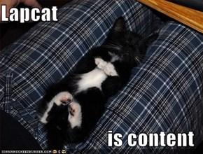 Lapcat  is content