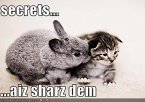 secrets...  ...aiz sharz dem