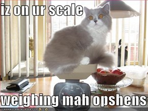 iz on ur scale  weighing mah opshens