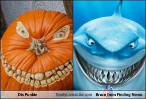 Dis Punkin Totally Looks Like Bruce from Finding Nemo