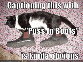 "Captioning this with ""Puss In Boots"" is kinda obvious"