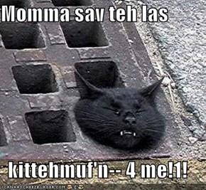 Momma sav teh las  kittehmuf'n-- 4 me!1!