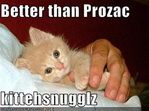 Better than Prozac  kittehsnugglz