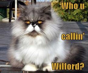 Who u callin' Wilford?