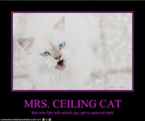 MRS. CEILING CAT