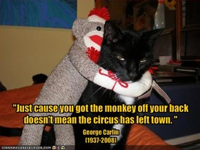 Smarty Kitteh Wisdom #3