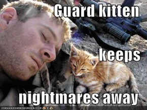 Guard kitten keeps nightmares away
