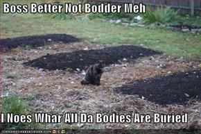 Boss Better Not Bodder Meh  I Noes Whar All Da Bodies Are Buried