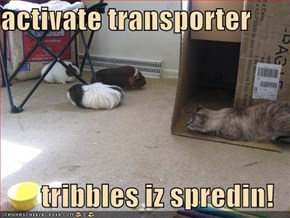 activate transporter  tribbles iz spredin!