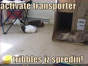 activate transporter  tribbles iz spredin!