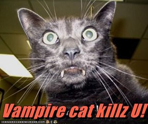 Vampire cat killz U!